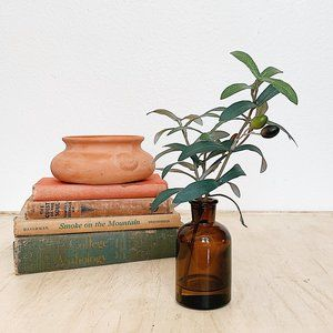 HEARTH & HAND Amber Glass Olive Branch Decor